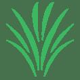 The BeniTalk Logo - News Blog and Consultation Company